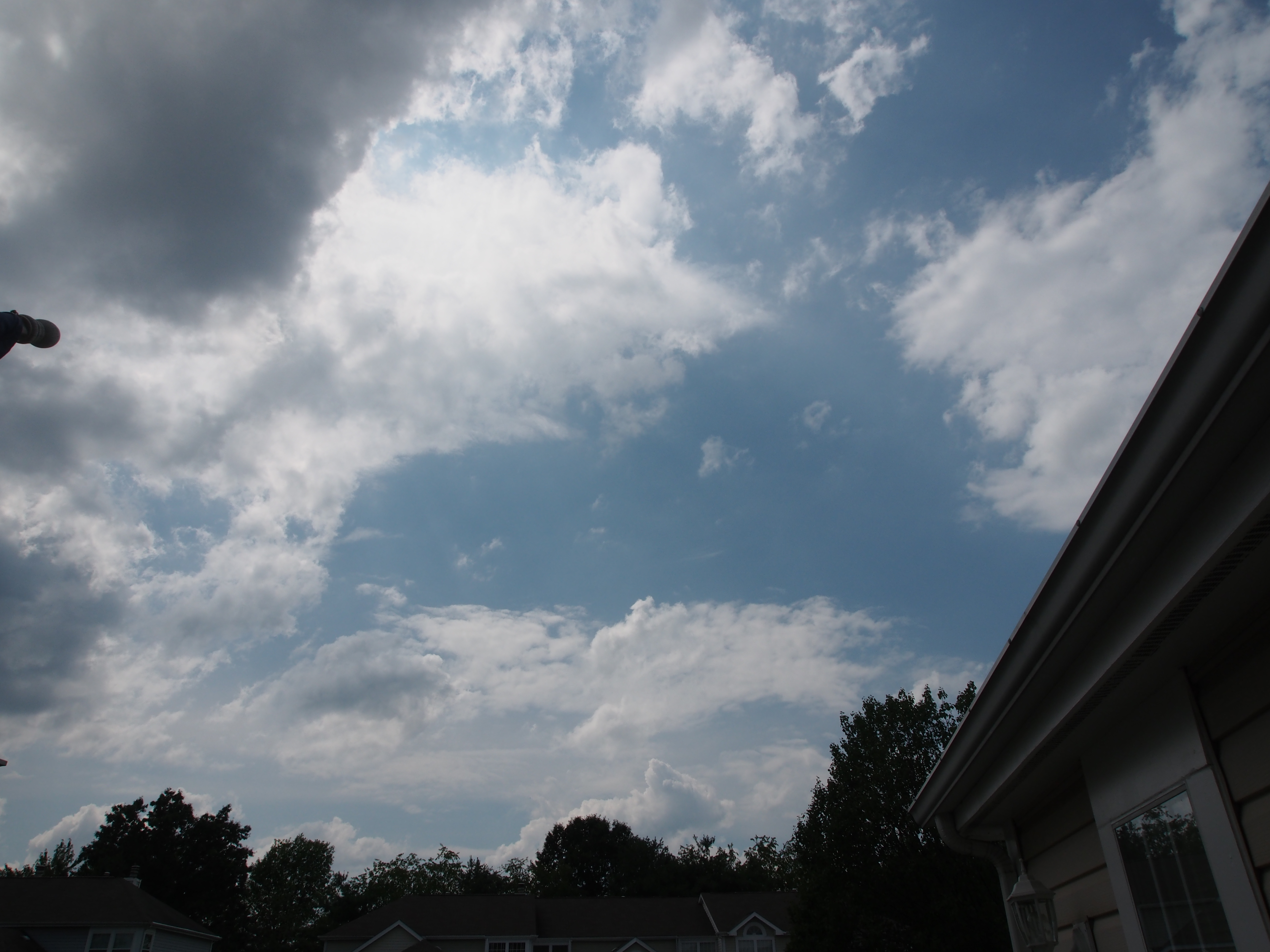 Picture with Polarized filter