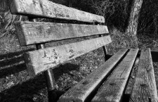 Park Bench by Kalee Greene