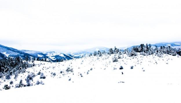 a mountainous beauty- Milos Radovanovic