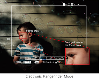 Electronic Rangefinder Mode