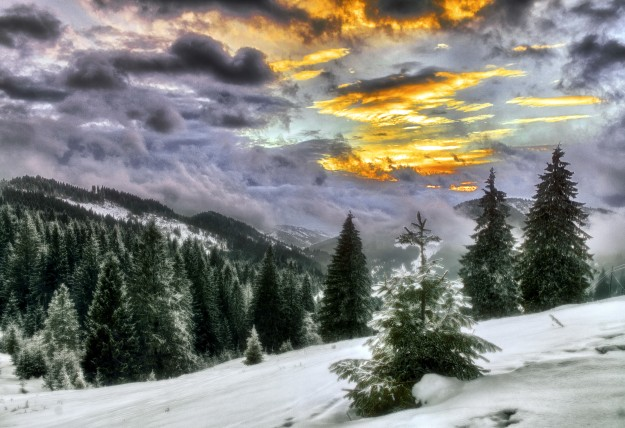 Carpathians January... Photo by Iurie Foca